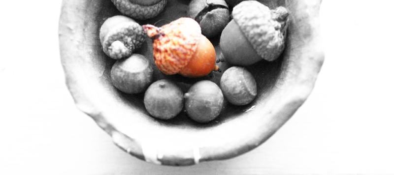 acorn-art-process-2