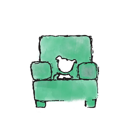 iris-in-chair