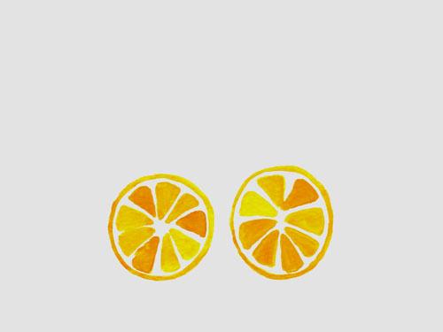 riasharon-sliced-oranges