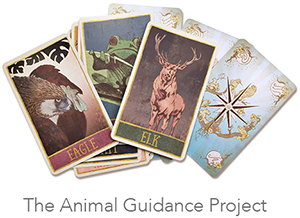 The Animal Guidance Project